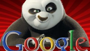 Google-Panda-Update-22